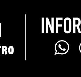 img-perfil-whatsapp-informes-site_Prancheta 1 cópia