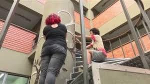 Espaços do Campus Santa Cruz ganham vida com  mosaicos produzidos por alunos de Arte