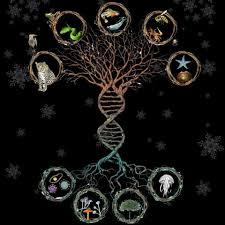 Biologia Evolutiva é tema de curso de inverno no campus Cedeteg