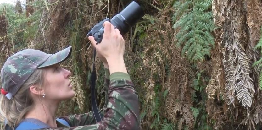 Com recursos do ICMS Ecológico, Unicentro trabalha no levantamento da fauna e da flora de Reserva do Iguaçu
