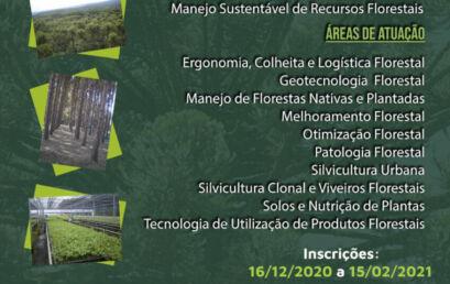Últimos dias de inscrições para o mestrado e doutorado em Ciências Florestais
