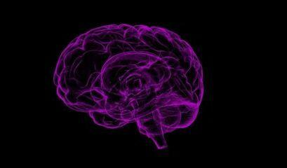 A Física do Sistema Nervoso