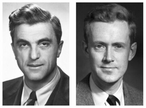 Prêmio Nobel em Física – 1952
