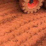 Análise da compactação do solo decorrente do tráfego de máquinas agrícolas é financiada pelo CNPq