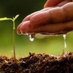 Projeto de manejo e conservação do solo e da água é contemplado por Edital da Fundação Araucária