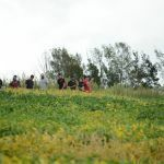 Fazenda-Escola realiza Unicentro Rural, seu segundo dia de campo