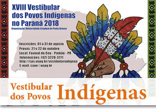 vestibular povos indígenas
