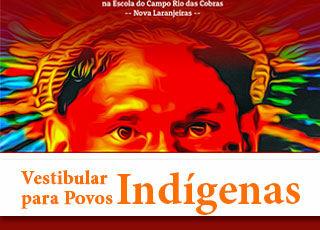 Vestibular Indígena