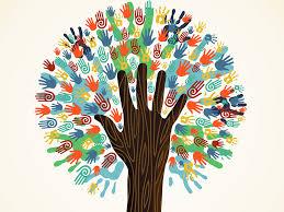 Alunos cotistas ou egressos de escolas públicas podem participar dos Editais do Pibis 2019
