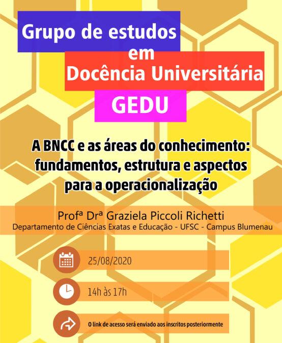 A BNCC e as áreas do conhecimento: fundamentos, estrutura e aspectos para a operacionalização